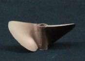 Octura 2 Blade Propeller-1957-0